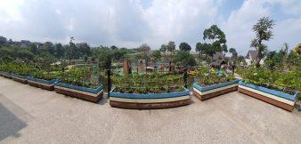 Lembang Park And Zoo Memiliki Luas 20 Ha