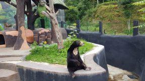 Kebun Binatang Lembang Park And Zoo